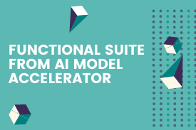 Functional Suite from AI Model Accelerator