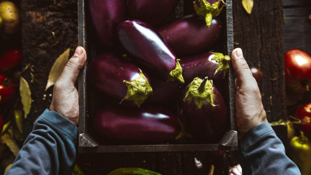 Eggplant reveals new automated testing capability